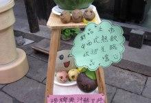 xitang_shanghai_china_13_