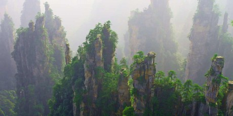 stone forest in zhang jiajie of china