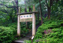 archway in the forest of hangzhou, china
